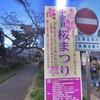 小金井桜まつり2019〜秋田のアテで夜桜を楽しむ〜