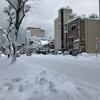 すごい雪❄️