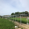 睦沢町上市場1号発電所の連系日決定のお知らせ