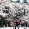 赤城南面千本桜まつり|平日に訪れた駐車場の混雑状況など:群馬県前橋市