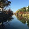 秋だ!京都だ!古本まつり!
