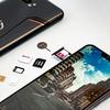 【一時的処置】楽天回線未対応のZenFoneシリーズで楽天モバイル(MNO)を使う方法