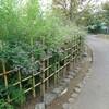 柳原千種園…