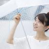英国エリザベス女王も使う、おしゃれな逸品ビニール傘!