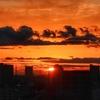天気と空と:2020-03-11〜03-15