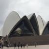 シドニーオペラハウス 日本語ガイドツアーチケット購入と集合場所