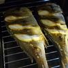 イサキが長崎から送られてきたので、刺身と塩焼きにしていただきました!