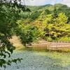 金矢池(岩手県花巻)