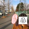 札幌移住までのカウントダウン! 3月1日の収支発表!