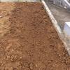 てきとうに畝作って、てきとうに小松菜の種をまいてみた 。たぶん生えない・・・