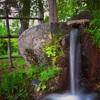 【湧水】龍の落とし水。慧日寺資料館にあふれる日本湧水百選の引水は美しい。
