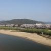 京都府八幡市「背割堤さくらまつり」
