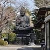 65s  春の陽気に誘われて東京大仏再訪!