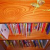 絵本棚を作ってみる|ビスケットジョイントで棚を自作