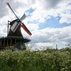 超特急で巡るフランス・オランダ1人旅~ザーンセ・スカンスで風車とチーズ