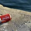 カナダケベック州では缶やペットボトルはスーパーで換金出来るからやってみよう