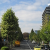 私が東京都港区の坂道を歩く理由