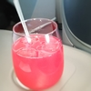 フライト1―2  福岡―シンガポール 787ー10ビジネスクラス搭乗レポ2  魅惑のシンガポール航空機内食