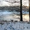 北欧の冬の辛さ。