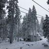 Dodge Ridge スキーリゾート