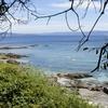 リアス式海岸とオンス島を観光-スペイン ポンテベドラ県 オンス島旅行記(2011/6)