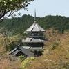 奈良県 吉野・大峰を散策