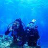 ♪透明度30mの慶良間で体験ダイビング♪〜沖縄体験ダイビング〜