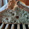 【手作りパン比較検証】全粒粉パンとライ麦パン