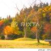秋色 里山