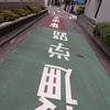 久々に歌舞伎町行ったらホストの先輩達に会えた!【日記】