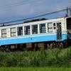 第1453列車 「 夏のキハ32形を狙う 2020・お盆 予讃線紀行その2 」