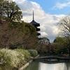 【京都旅行】京都駅からすぐの世界遺産!東寺へ行ってきた