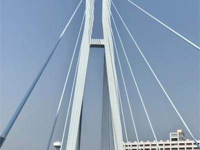 辰巳緑道公園、辰巳桜橋ランニング 〜気温28度、夏の訪れ〜