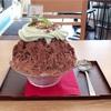 ビターなチョコミントかき氷*ぷるぷる&カリカリ食感◎(サカノウエカフェ @湯島)