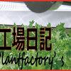 JA宮崎経済連による冷凍ホウレンソウの総生産量は2600トン