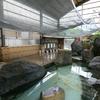 【朝倉市】原鶴温泉 やぐるま荘~室内にも関わらず開放的すぎる大浴場
