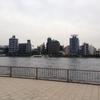 隅田川テラスの投げ釣り(ルアー)禁止!今後のシーバス釣りを考える
