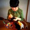 ぬいぐるみ作家・北村日乃さんにインタビューしました