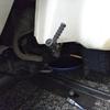 #バイク屋の日常 #ホンダ #ジャイロキャノピー #エンジンオイル #交換 #オイル量