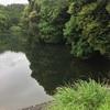 『三田ヶ池』静岡県掛川野池群バス釣り完全攻略マップ