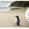 【ショック!】ニュージーランド航空減額ANAマイルで行けるキャンペーンを見逃した