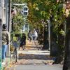 201121_近所の公園をお写んぽ。後編 望遠ズームレンズのM.ZUIKO DIGITAL ED 40-150mm F2.8