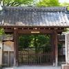 京都 青モミジの宝筐院