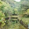 八丈島大池(東京都八丈島)