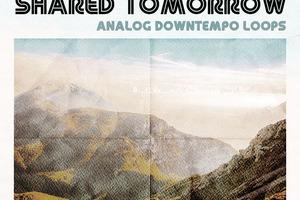 80〜90'sエレクトロニカの有機的な質感「MODEAUDIO SHARED TOMORROW」