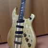 【ギター】ARIAのギターを語る:PE/RS/TS/CSシリーズ