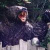 日本史上最悪の獣害!「三毛別羆事件」