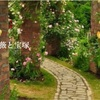 宝塚な薔薇の名前集合!〜ファントム・桜木・春の雪・グランドホテル・千・レイ・・・