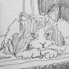 ニュースで英語術 「ネコは自分の名前を聞き分ける?」