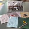 野鳥カレンダー 2020